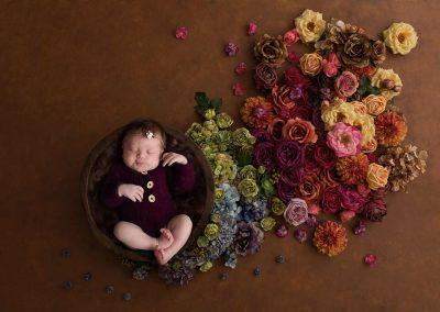 newborn flowers bloemen diana schouten fotografie hellevoetsluis