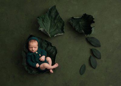 portfolio newborn 3